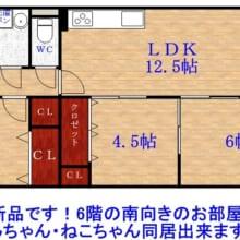 オール洋室(間取)